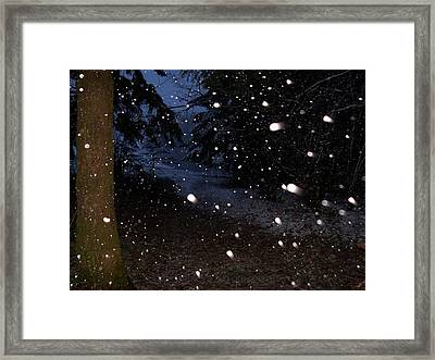 Snow Dance Framed Print