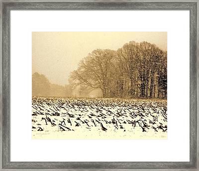 Snow Day Framed Print by Steve Godleski