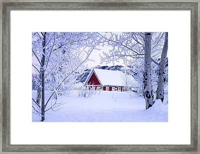 Snow Day Framed Print by Teri Virbickis