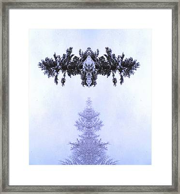 Snow Delivery Framed Print