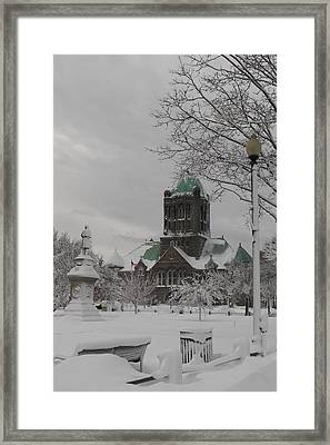 Snow Draped Green Framed Print