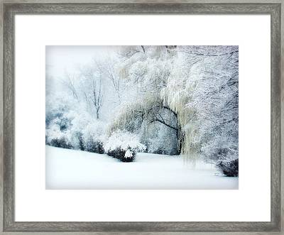 Snow Dream Framed Print
