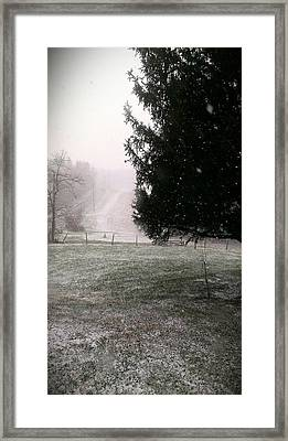 Snow Falling Framed Print by Nickaleen Neff