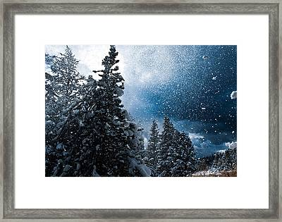 Snow Flurry Framed Print