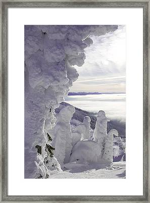 Snow Ghosts Framed Print by Beth Marshall