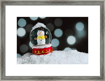 Snow Globe Framed Print