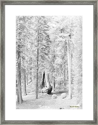 Snow Impressions Framed Print by Angela Stanton