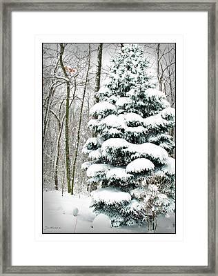 Snow In Ohio Framed Print by Joan  Minchak