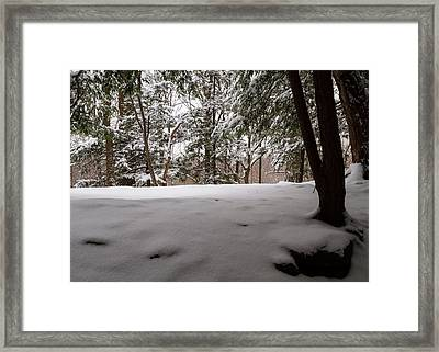 Snow In Shade  Framed Print by Tim Fitzwater