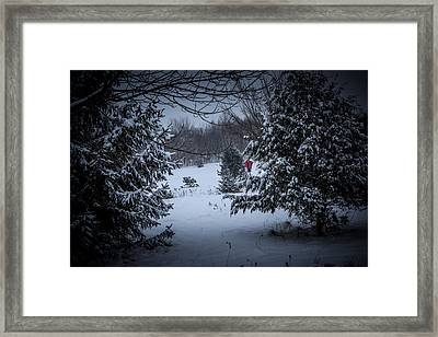 Snow In The Meadow Framed Print by Cheryl Swift