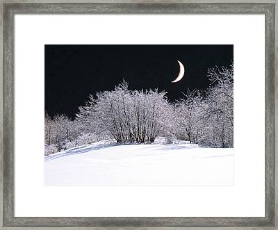 Snow In The Moonlight Framed Print by Giorgio Darrigo