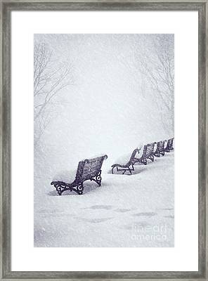 Snow In The Park Framed Print by Jelena Jovanovic