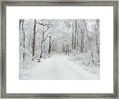 Snow In The Park Framed Print by Raymond Salani III