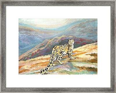 Snow Leopard In The High Mountains Framed Print by Gary Beattie