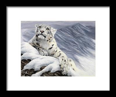 Snow Leopard Framed Prints