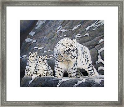 Snow Leopard Protects Her Cubs Framed Print by Charles Wallis