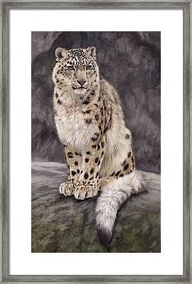 Snow Leopard Sentry Framed Print by David Stribbling
