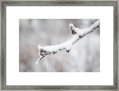 Snow Macro Framed Print