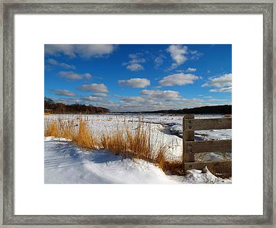 Snow Marsh Framed Print