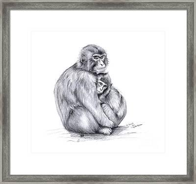 Snow Monkey And Baby Framed Print by Svetlana Ledneva-Schukina