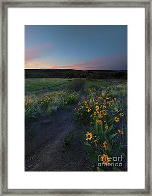 Snow Mountain Trail Framed Print