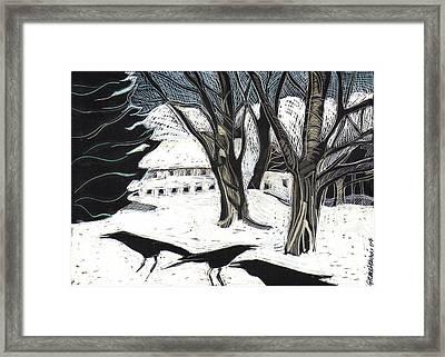 Snow Noise Framed Print
