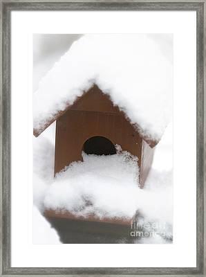 Snow On Bird House Framed Print by Birgit Tyrrell