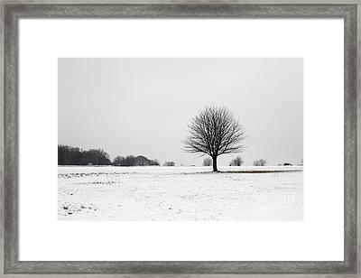 Snow On Epsom Downs Surrey England Uk Framed Print