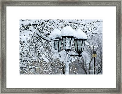 Snow On Lamps Framed Print