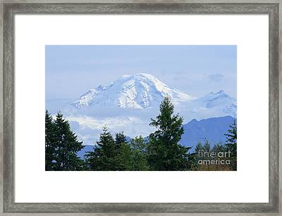 Snow On Mount Baker Framed Print by Sharon Talson