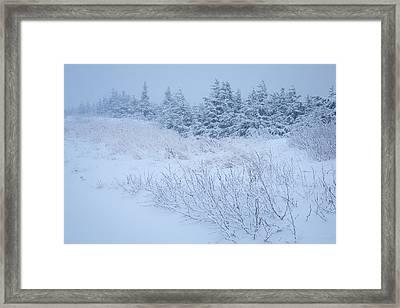 Snow On New Years Eve Framed Print