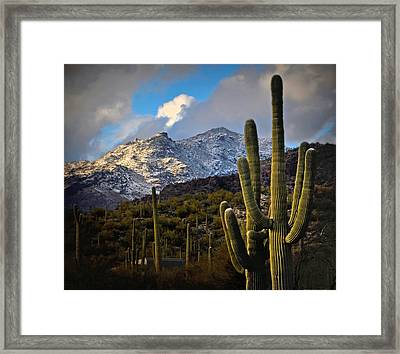 Snow On The Catalina Mountains Framed Print by Jon Van Gilder