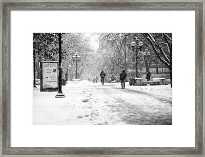 Snow On The 'diag' Framed Print