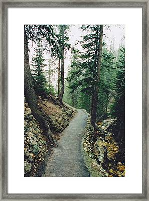 Snow On The North Rim Trail Framed Print