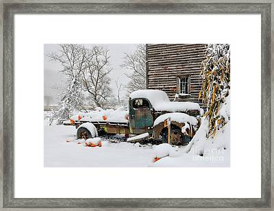 Snow On The Pumpkin Harvest Framed Print