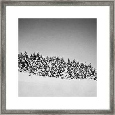 Snow On Tree Framed Print by Frodi Brinks