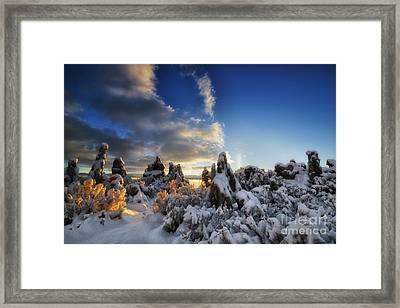 Snow On Tufa At Mono Lake Framed Print by Peter Dang