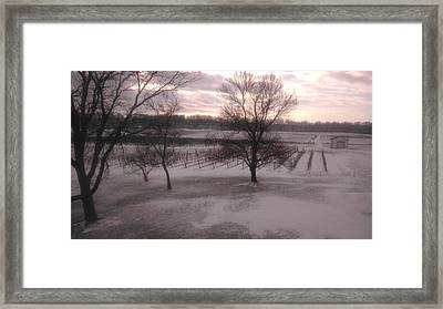 Snow On Vineyard Framed Print by Larry Hall