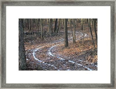Snow Path Winding Through The Woods Framed Print by Annette Gendler