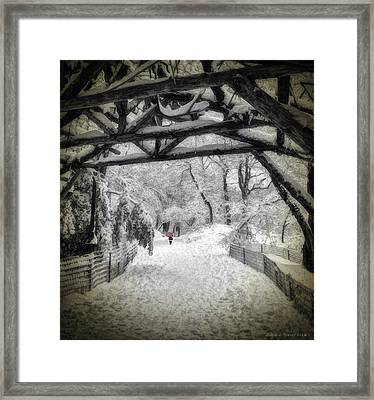 Snow Scene In Central Park Framed Print