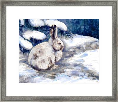 Snow Shoe Rabbit In Winter Framed Print by Peggy Wilson