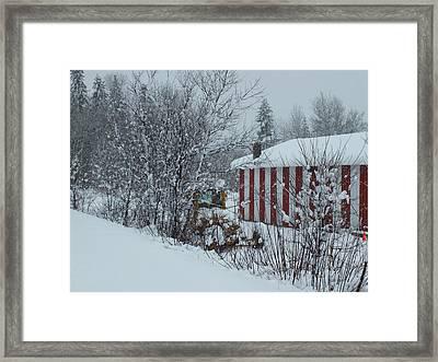 Snow Storm 2 Framed Print by Gene Cyr