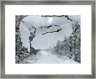 Snow Storm 4 Framed Print by Gene Cyr