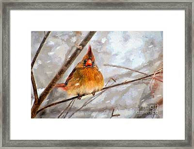 Snow Surprise - Painterly Framed Print by Lois Bryan