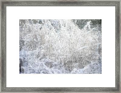 Snow Textures Framed Print by Suzanne Powers