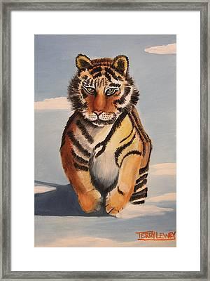 Snow Tiger Framed Print by Terry Lewey