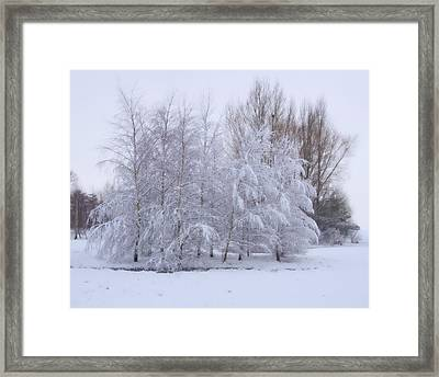 Framed Print featuring the photograph Snow Trees by Paul Gulliver