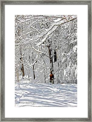 Snow Walking Framed Print by Denise Romano