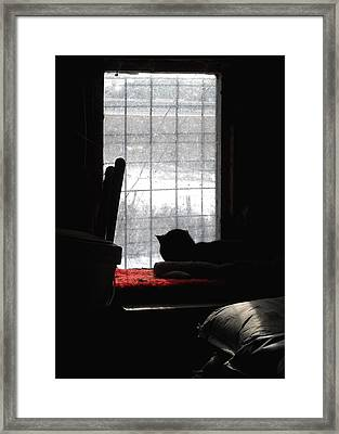 Snow Watching Framed Print