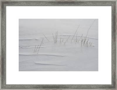 Snow Whispers Framed Print